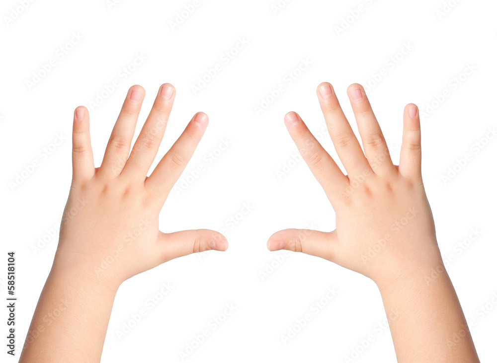 Fototapeta two children hands on an isolated background