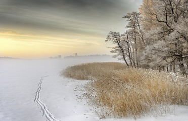 Fototapeta Misty winter morning
