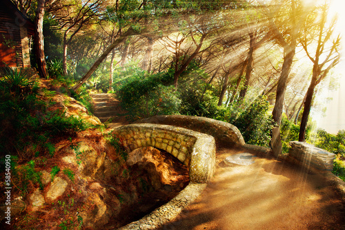 Mystical Park. Old Trees and Ancient Stone Bridge. Pathway