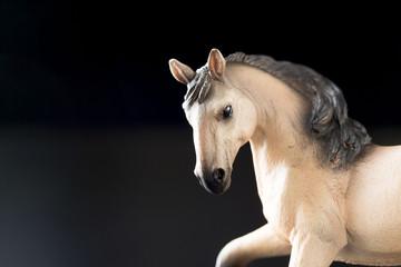 黒背景の馬