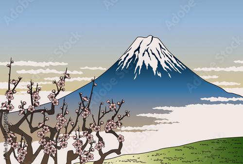 Fotografie, Obraz  富士山と梅の花