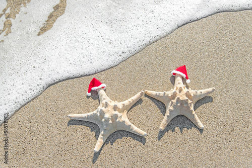 Foto-Doppelrollo - Sea-stars couple in santa hats on sand. (von EMrpize)