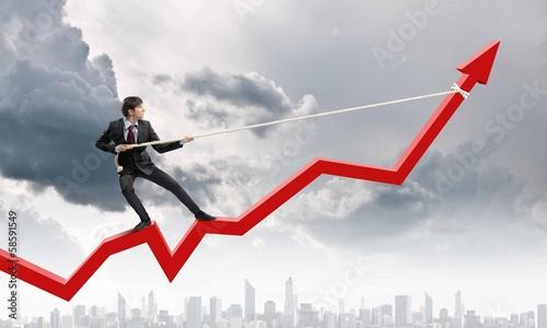 Cuadros en Lienzo Growth concept