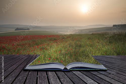 Keuken foto achterwand Khaki Creative concept pages of book Poppy field landscape in Summer c