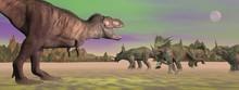 Tyrannosaurus Attacking Styrac...