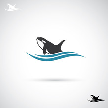 Orca Whale Label