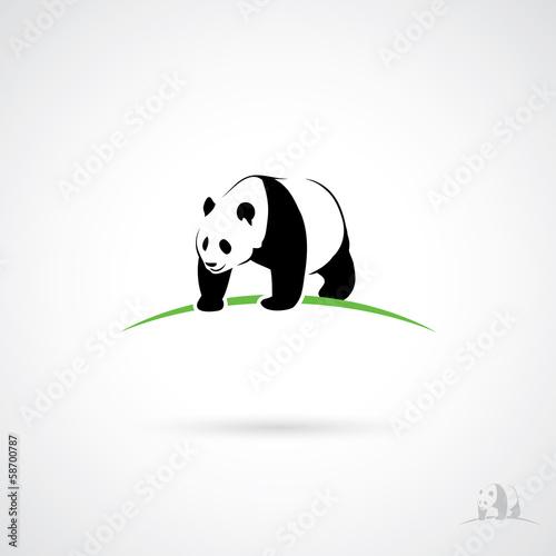 Fotografie, Obraz  Giant Panda label