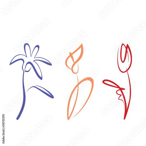 przedstawione-recznie-rysowane-kolekcji-kwiatow