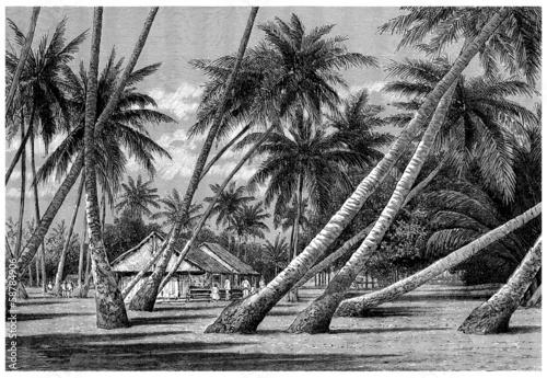 Papiers peints Vieux rose Pacific Islands : Landscape