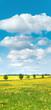 Endlich Frühling, Blumenwiese, sonnige Landschaft, Banner