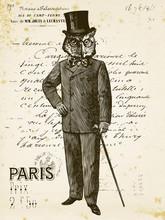Owl Man In Paris