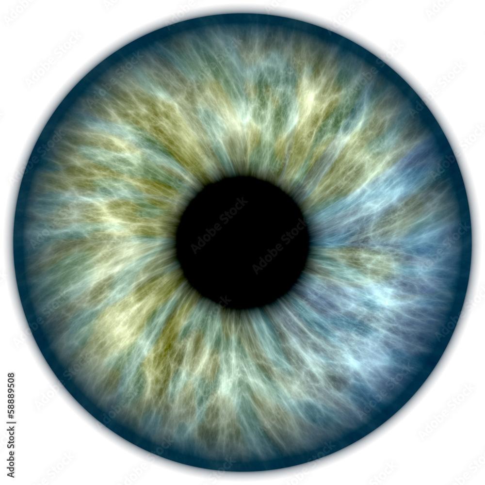 Fototapeta Blue green iris