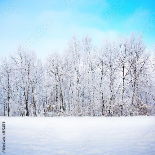 Printed kitchen splashbacks Light blue Winter scene