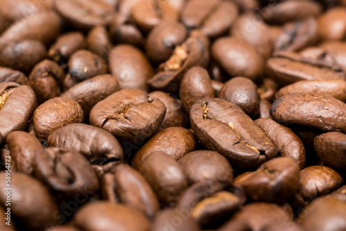 Photo Stands Coffee bar Fresh Roasted Coffee Beans