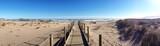 Spaziergänge durch den Strand