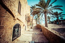 The Old Streets Of Jaffa, Tel ...