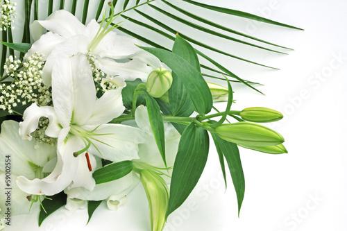 Fototapety, obrazy: White lily flowers