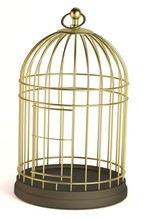Realistic 3d Render Of Bird Cage