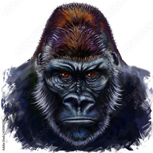 gorilla male Poster