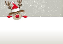 Rednosed Reindeer Copy Space, ...
