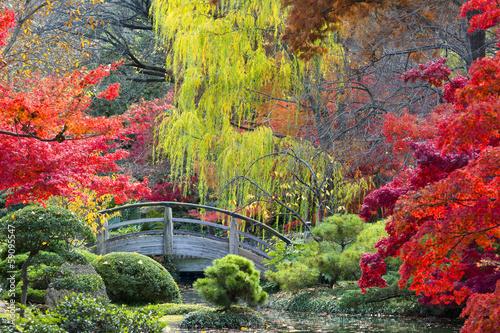 Fotografia  Moon Bridge in the Japanese Gardens