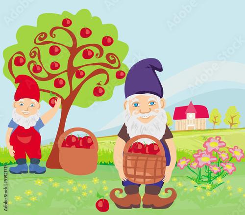 In de dag Regenboog two dwarfs and apple tree