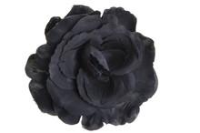 Black Flower Head Rose On White Background