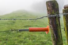 Orange Plastic Insulator Of An Electric Fence