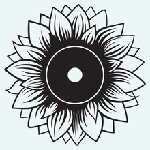 Sunflower Isolated On Blue Background