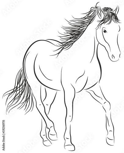 Garden Poster Pony Calligraphic Horse - Illustration