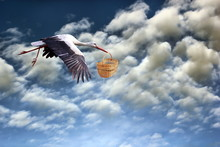 Stork Bringing Baby In Basket
