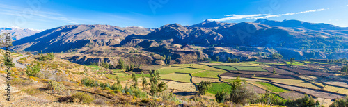 Spoed Foto op Canvas Zuid-Amerika land Panorama of Colca Canyon, Peru,South America.