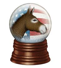 Democrat Snow Globe