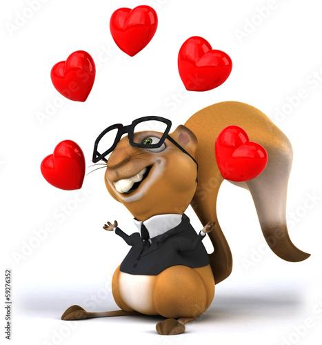 Fotobehang Boerderij Squirrel