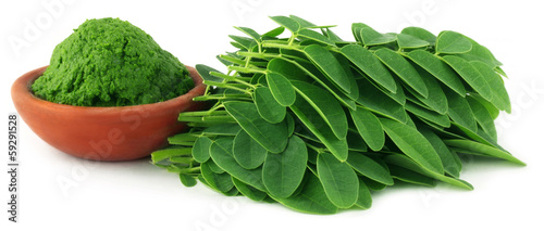 Poster Légumes frais Moringa leaves with paste