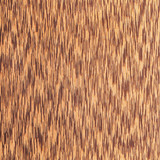 texture of  wenge tree, wood grain