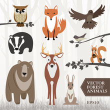Set Of Forest Animals. Vector Image