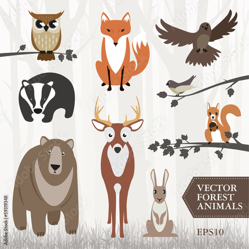 Poster Uilen cartoon Set of forest animals. Vector image