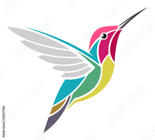 Stampa su Tela Anna's Hummingbird