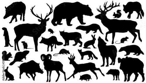 Naklejka premium forest_animal_silhouettes
