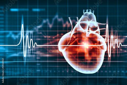 Photo  Human heart beats
