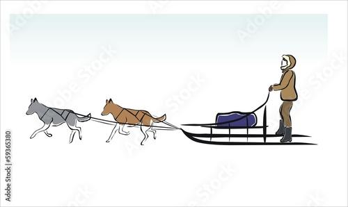 Fotografia  trineo de perros