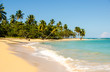 Wunderschöner, karibischer Traumstrand (Samara)