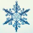 canvas print picture - natural crystal snowflake macro
