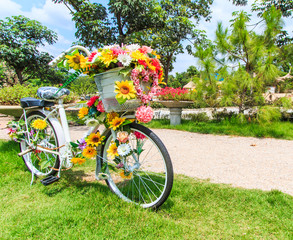 FototapetaFlower on a bicycle as the decoration
