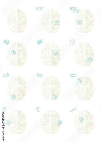 Fotografie, Obraz  działanie mózgu widok z góry schemat elementy infograficzne