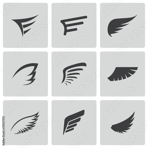 Fotografie, Obraz  Vector black wing icons set