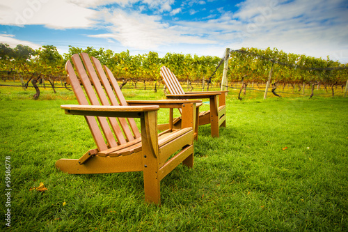 Fotografie, Obraz  Adirondack style chair on lawn of vineyard
