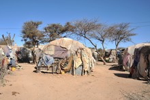 Camp For African Refugees   Of...