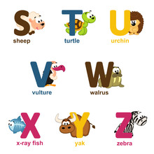 Alphabet Animals From S To Z -...